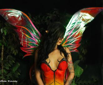 metal butterfly 1